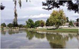 Lake behind Wellington Estates