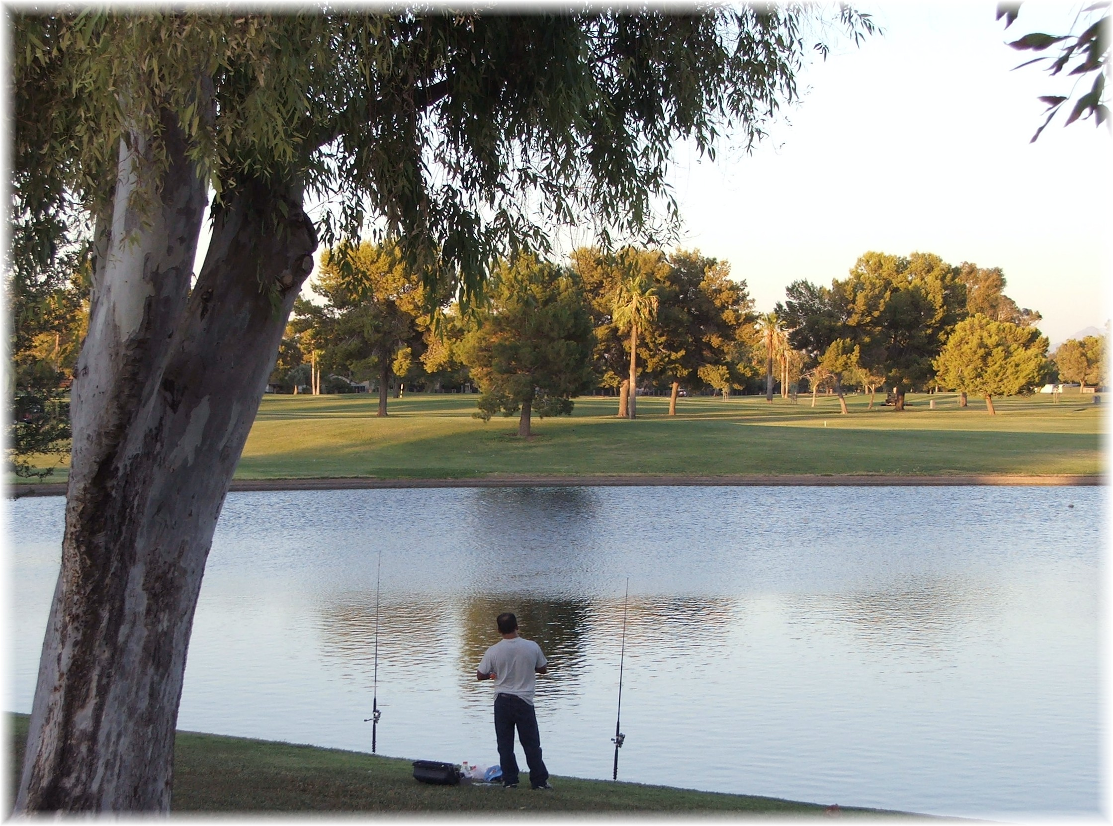 Dobson Ranch Park Lake And Golf Course Phoenix Arizona