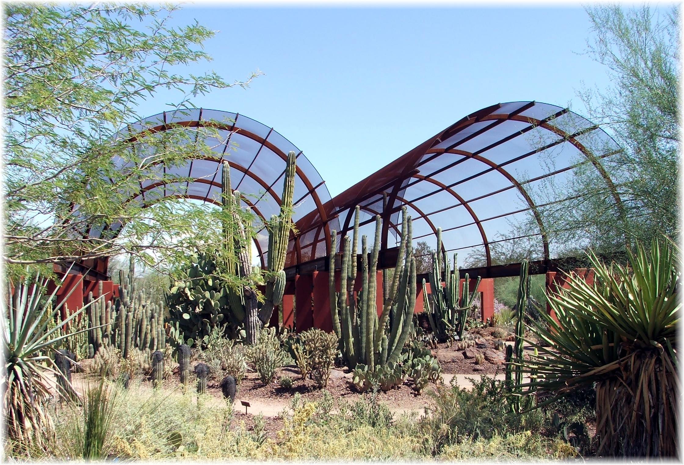 Botanical Gardens Az Desert Botanical Garden Central Arizona Traveldigg Botanical Gardens Az