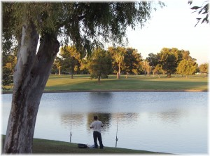 Dobson Ranch Park Lake and Golf Course