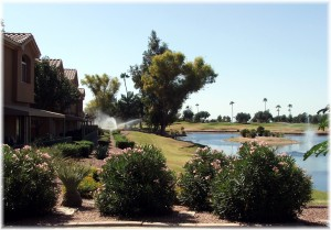 Superstition Lakes overlooking water
