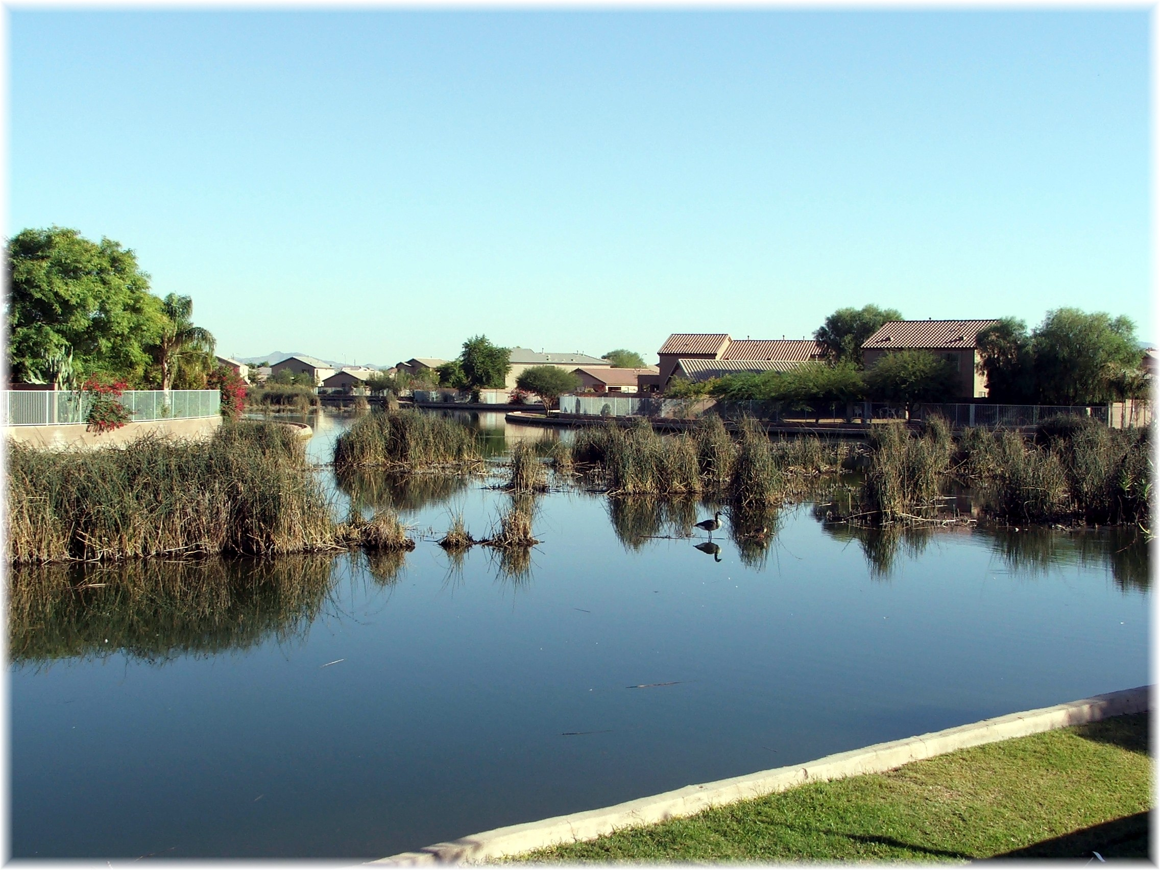 Avondale Waterfront Homes And Lake Communities